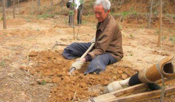 70-летний ветеран с физическими ограничениями посадил 17 тысяч деревьев за 20 лет
