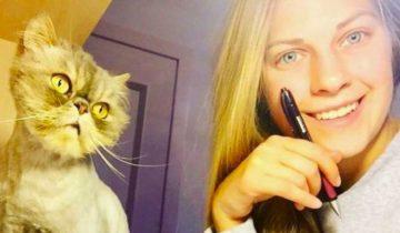 Хрупкая девушка спасла 350 кошек подарив им новую жизнь и любовь