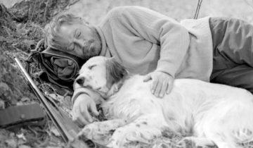 Как сложилась после съемок судьба собаки из фильма «Белый Бим — черное ухо»
