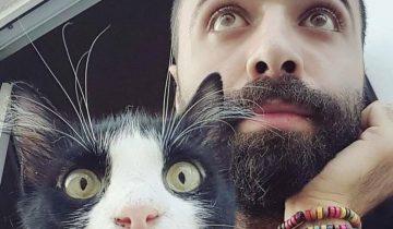 Сарпер Думан — турецкий музыкант и его чудесные кошки