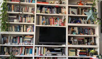 В сети пытаются отыскать кота на фото с книжной полкой. Оказалось, он нашел довольно интересное место