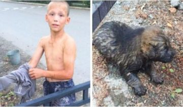 12-летний Саша спас из затопленной сточной канавы крошечного щенка