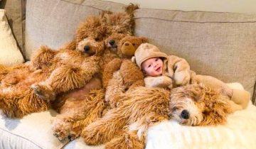 У 6-ти месячного ребенка няньки, которые очень напоминают плюшевых медведей!