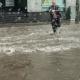 Несмотря на сильный дождь парень побежал спасать котенка. Такие поступки помогают нам верить в добро