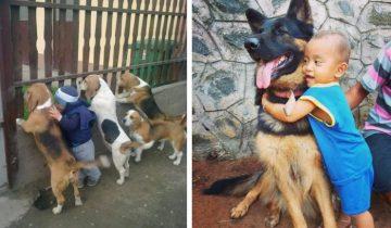 Собака – самый лучший друг ребёнка: 18 милых доказательств