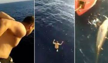 Моряк прыгнул с 12-метровой палубы чтобы спасти кита, который был в беде