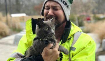 Обняв найденного кота, мужчина зарыдал, как ребенок. Он уже и не верил, что вновь увидит своего питомца