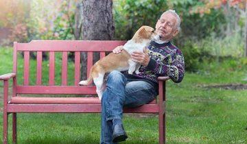 Одинокий мужчина Геннадий и пёс по кличке Алекс