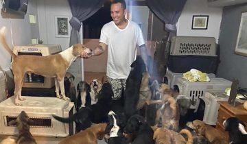 В Мексике парень спрятал у себя дома 300 бездомных животных, чтобы спасти их от урагана