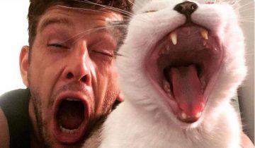 Коварный тест на самоконтроль: нужно просто не зевнуть!