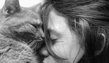 К каким людям тянутся коты и к кому они испытывают доверие?