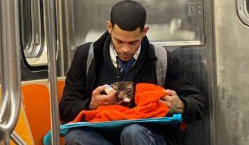 Фото незнакомого парня с котенком в метро возвращает веру в человечество