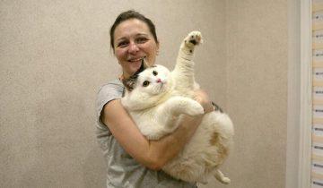 Котик по кличке Перышко весит как 200-кг человек. И он самый толстый в Беларуси!