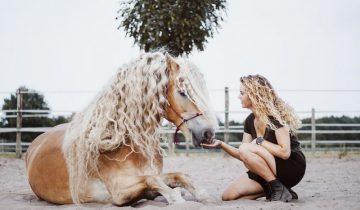 Лошадь, похожая на диснеевскую принцессу, сразила своей красотой