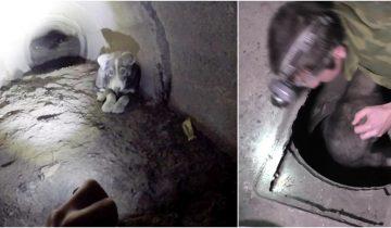 Парни спасли щенка, который застрял в тоннеле и громко скулил