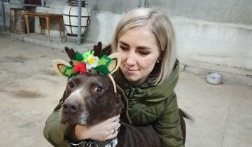 Девушка спасает бездомных животных и находит им новых владельцев